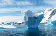 寻找奇异生物:冻不死的生物,常温下反而会融化变成粘稠物