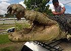 普鲁斯鳄,咬合力竟比霸王龙还大(均重18吨)
