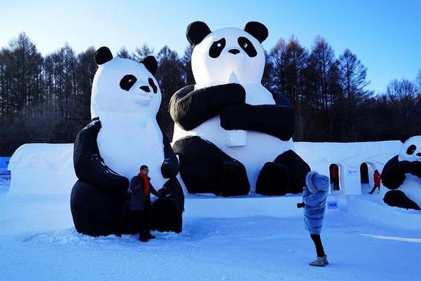 净月潭瓦萨滑雪节,造雪15万立方米营造一个冰雪童话