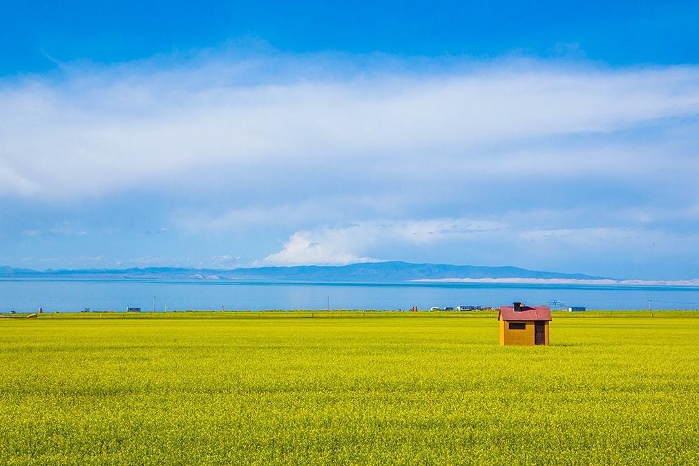 让摄影师疯狂的6个旅行地,梦幻梯田,油菜花海,随手拍都是大片