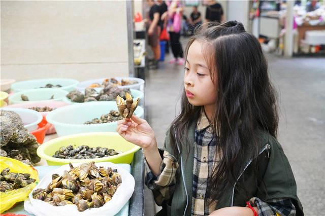 浙江嵊泗,感受最烟火的海岛慢生活,梭子蟹15一斤佛手却要400一斤