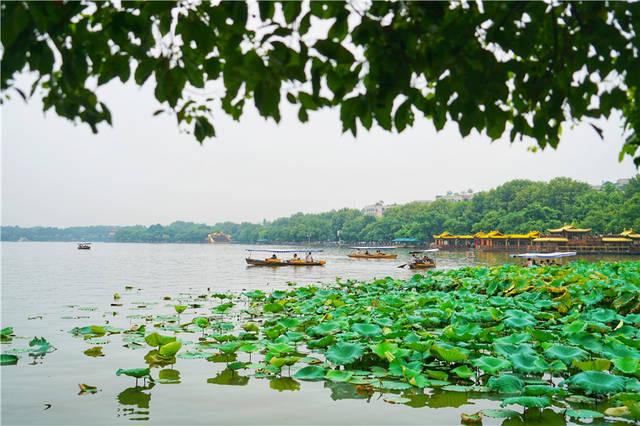 杭州慢旅行,住进一家摩登时尚的酒店,走路5分钟可欣赏西湖秋色